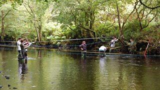 Photograph of Fieldwork on the Glenarm River