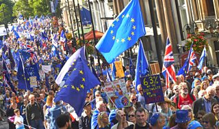 Pro-EU demonstrators at the People's March for Europe against Brexit