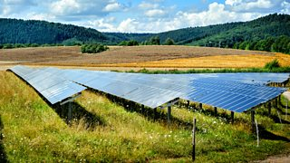 A large number of solar panels agled towrds the sun in a field of frass and wildflowers