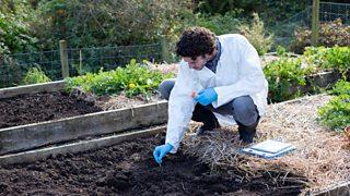 A scientist taking a soil sample.