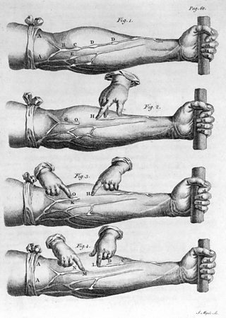 One of Harvey's most famous, but simple, experiments. It demonstrated how blood moved to a patient's forearm