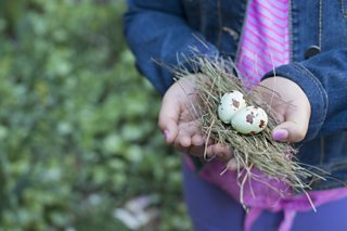 A photo of a girl holding out a small bunch of twigs and two eggs