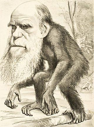 A satirical cartoon depicting Charles Darwin as a monkey, 1871