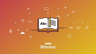 Bitesize's new brand identity
