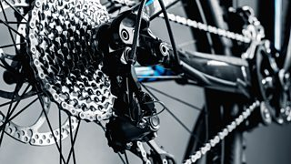 A close-up image of the rear of a bicycle - including the chain, wheel and brakes.