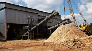 A large pile of wood chips at a timber mill ready for the production of manufactured boards.