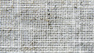 A close-up of a white plain weave (one over and one under).