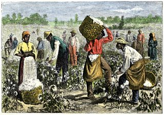Hand-colored woodcut of a 19th-century illustration showing Afroamerican slaves picking cotton in the South