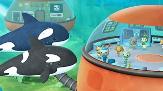 Octonauts - Series 1 - The Crab And Urchin