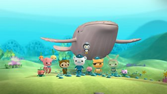 Octonauts - Series 1 - The Blobfish Brothers