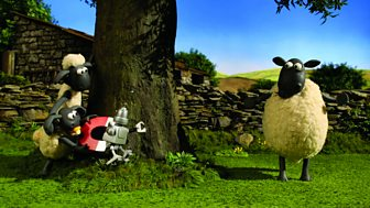 Shaun The Sheep - Series 2 - The Magpie