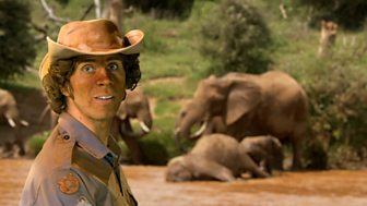 Andy's Wild Adventures - Series 1 - Elephants
