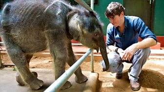 Indian Ocean With Simon Reeve - 5. Sri Lanka To Bangladesh