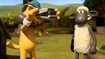 Shaun The Sheep - Series 3 - The Snapshot