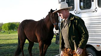 Storyville - 2013-2014: 1. Buck: The Real Horse Whisperer