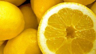 Chris Stewart - Driving over Lemons