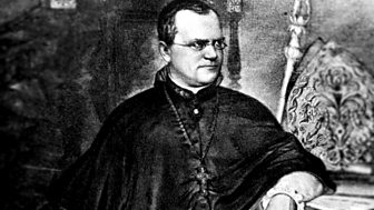 Gregor Mendel - A Monk and Two Peas