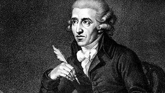 Haydn Essays
