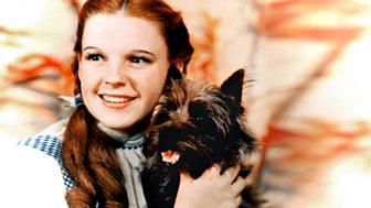 Susie Boyt - My Judy Garland Life