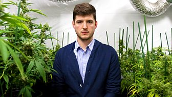 Cannabis: What's the Harm?