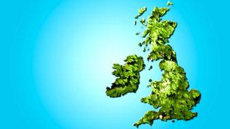 Hedge Britannia