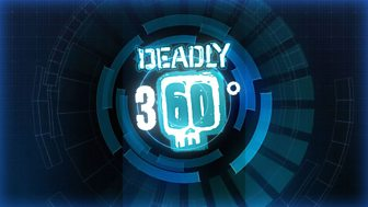 Deadly 360 - 13. Cats