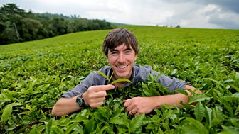 This World - The Tea Trail With Simon Reeve
