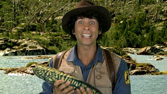 Andy's Dinosaur Adventures - Coelophysis And Fish