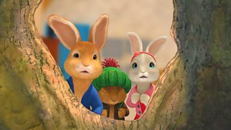 Peter Rabbit - The Tale Of The Wrecked House