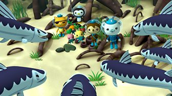 Octonauts - Series 3 - Barracudas