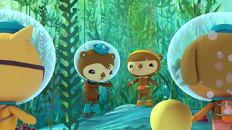 Octonauts - Series 3 - Urchin Invasion