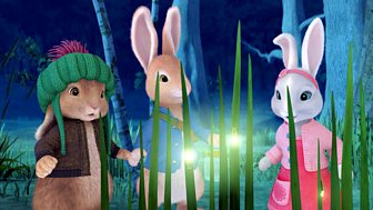 Peter Rabbit - The Tale Of The Dash In The Dark