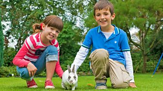 Topsy And Tim - Series 2 - New Pet