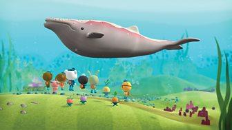 Octonauts - Series 1 - The Albino Humpback Whale