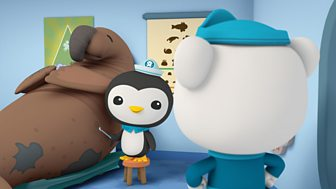 Octonauts - Series 1 - The Enormous Elephant Seal