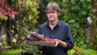 Nigel Slater's Simple Cooking