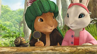 Peter Rabbit - 41. The Tale Of The True Friends