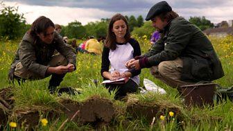 The Quest For Bannockburn - Digging Deeper