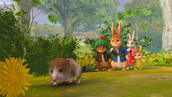 Peter Rabbit - Series 2: 29. The Tale Of The Saving Of The Shrew