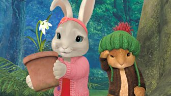 Peter Rabbit - Series 2: 45. The Tale Of The First Bluebell