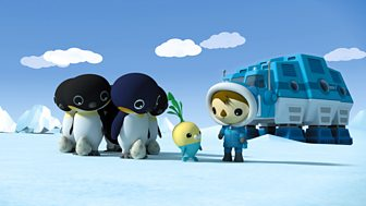 Octonauts - Series 4: 10. Octonauts And The Emperor Penguins