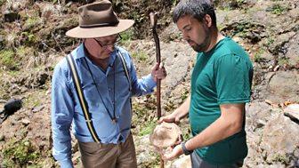Nature's Wonderlands: Islands Of Evolution - 3. Madeira: Island Ark