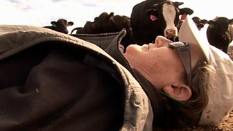 Horizon - 2005-2006: The Woman Who Thinks Like A Cow