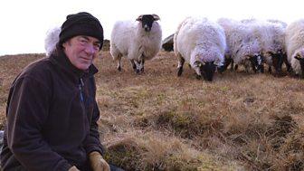 This Farming Life - Episode 3