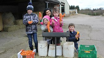 Down On The Farm - Series 2: 4. Carrots And Alpacas