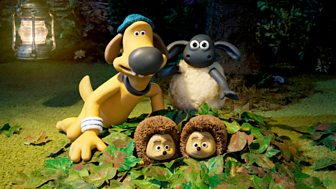Shaun The Sheep - Series 5: 12. A Prickly Problem