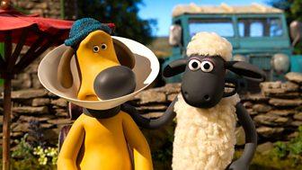 Shaun The Sheep - Series 5: 19. Cone Of Shame
