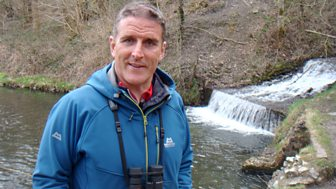 Iolo's Great Welsh Parks - Series 3: 4. Dare Valley Country Park