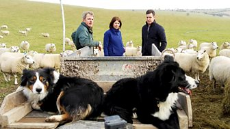 Countryfile - South Downs