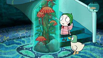Sarah & Duck - Series 3: 15. Planetarium Aquarium